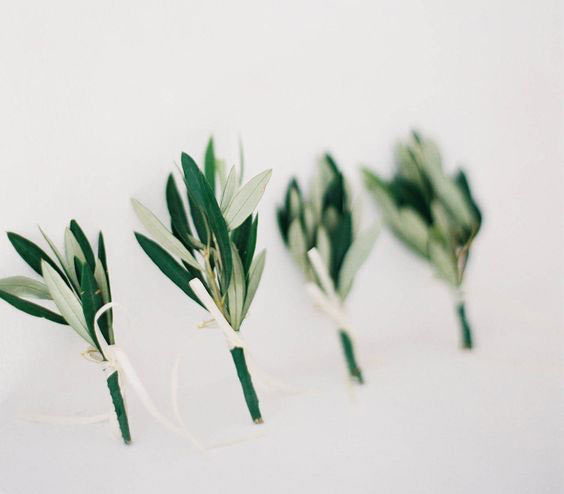 μπουτονιέρα με φύλλα ελιάς