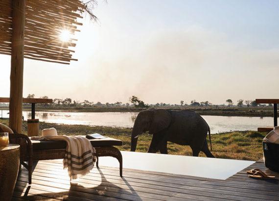 Γαμήλιο Ταξίδι 7 Λόγοι να επισκεφθείτε την Αφρική